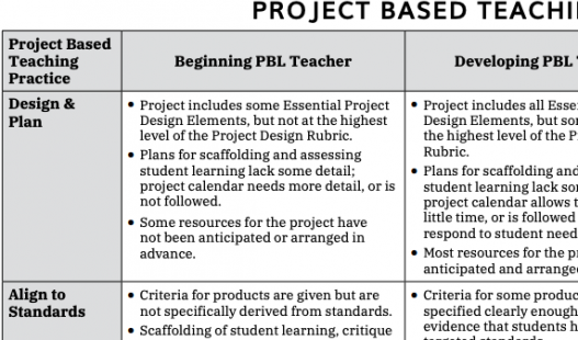 This is a thumbnail image of the Project Based Teaching Rubric .pdf attachment